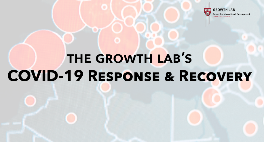 Growth Lab's COVID-19 Response & Recovery